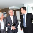 Senior couple visiting modern house with real-estate agent — Stock Photo #6699465