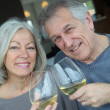 Stock Photo: Portrait of happy senior couple cheering with wine