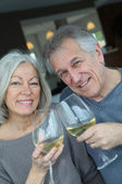 Portrait of happy senior couple cheering with wine — Stock Photo