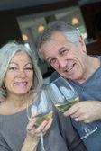Portrait of happy senior couple cheering with wine — Stock Photo
