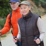 Senior couple on a walking day — Stock Photo