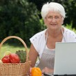 Elderly woman with basket of fresh vegetables — Stock Photo
