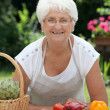 Elderly woman with basket of fresh vegetables — Stock Photo #6702626