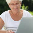 Royalty-Free Stock Photo: Elderly woman using internet