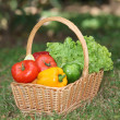 Basket of fresh vegetables — Stock Photo #6702647