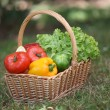 Basket of fresh vegetables — Stock Photo