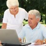 Senior couple using laptop computer — Stock Photo