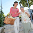 Home carer with elderly person - Stock Photo
