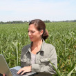 Agronomist in corn field — Stock Photo #6702850