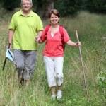 Senior couple rambling in countryside — Stock Photo #6703037