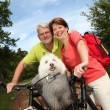 Senior couple riding bicycle — Stock Photo #6703042
