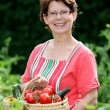 Стоковое фото: Senior woman in kitchen garden