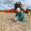 Stock Photo: Farmer in wheat field with harvester
