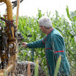 Foto Stock: Farmer controlling irrigation machinery