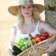 Beautiful woman with basket of vegetables — Stock Photo #6703370