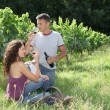 Stock Photo: Couple of winegrowers testing wine