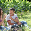Couple of winegrowers testing wine — Stock Photo