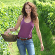 Winegrower woman with basket of grapes — Stock Photo #6705091