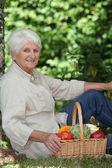 Elderly woman with basket of vegetables — Stock Photo