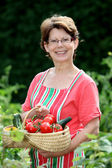 Senior woman in kitchen garden — ストック写真