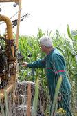 фермер контроль орошения машины — Стоковое фото