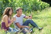 Couple of winegrowers testing wine — Stock Photo