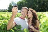 Par winegrowers i vingården — Stockfoto