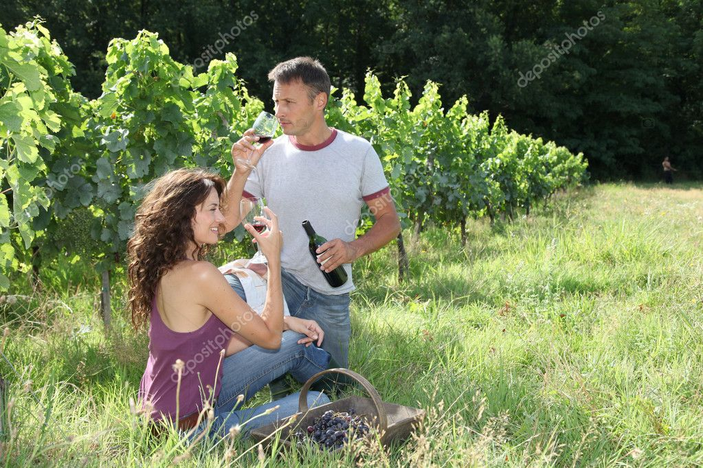 Couple of winegrowers testing wine in vineyard  Stock Photo #6705064