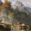 Wolf And The Rocky Mountains - Stock Photo