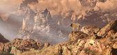 Bergsgeten i klippiga bergen — Stockfoto