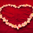 Heart shape made from rose petals — Stock fotografie #5740655