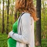 mulher grávida jovem feliz, segurando as mãos na barriguinha — Foto Stock #5741902