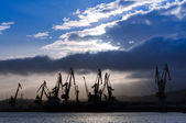 Morning in the harbor — Stockfoto
