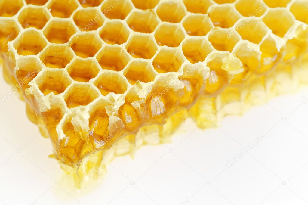 Honeycomb isolated on white — Stock Photo #5670090