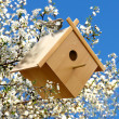 Stock Photo: Birdhouse in garden