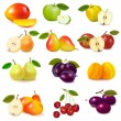 Group with different sorts of fruit. Vector. - Stock Vector