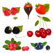 Group of cranberries, blueberries, cherries, raspberries wild strawberries — Stockvektor