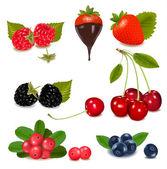 Group of cranberries, blueberries, cherries, raspberries wild strawberries — Stock Vector