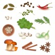 Group of spices. Vector. - Stock Vector