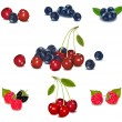 Royalty-Free Stock Vector Image: Photo-realistic vector illustration. Group of berries.