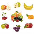 Group with different sorts of fruit. Vector. — Stock Vector #5752646