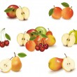 Royalty-Free Stock Vector Image: Photo-realistic vector illustration. Big group of different fruit.