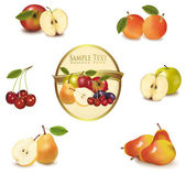 Gold label with different sorts of exotic fruit. Vector. — Stock Vector