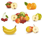 Photo-realistic vector illustration. Big group of different fruit. — Stock Vector