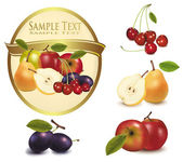 Yellow label with different sorts of fruit. Vector. — Stock Vector