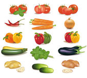 The big colorful group of vegetables. Photo-realistic vector — Stock Vector