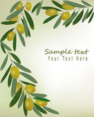 Green olives background. Illustration vector. — Stock Vector