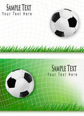 Two football backgrounds. Vector. — Stock Vector