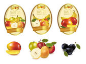 Gold labels with different sorts of fruit. Vector. — Stock Vector