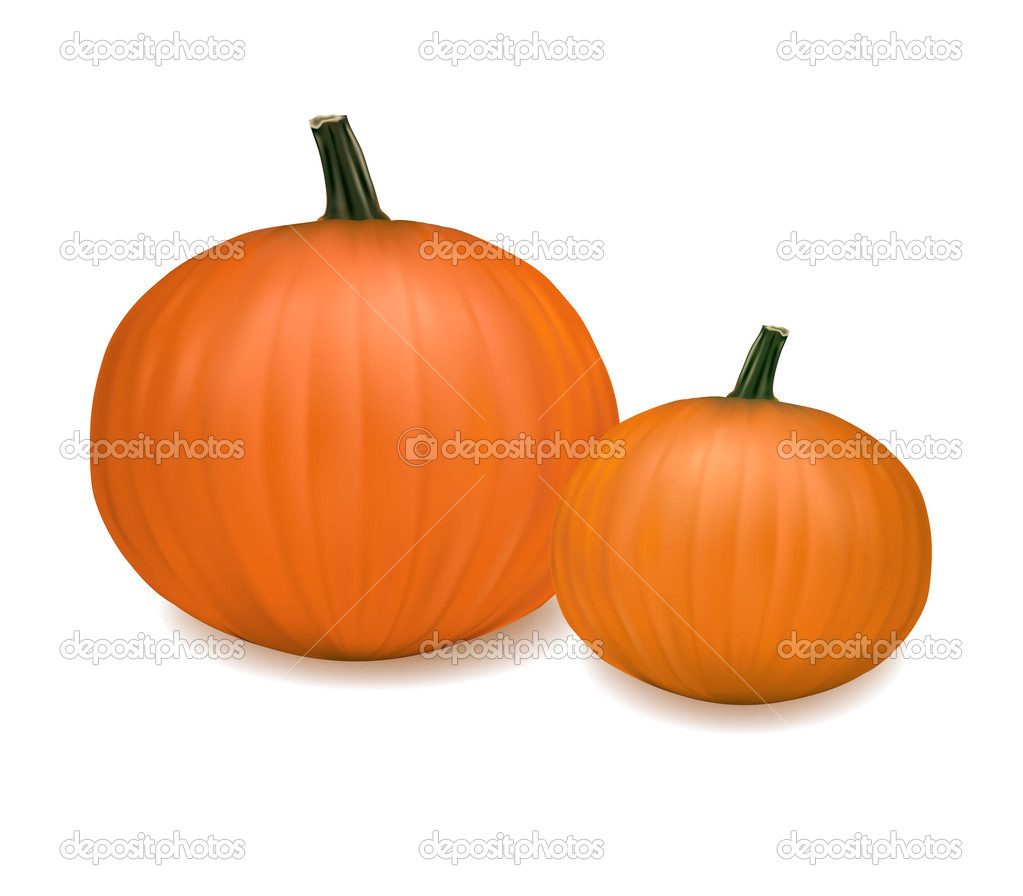 Two fresh pumpkins. Photo-realistic vector.  — Stock Vector #5777000